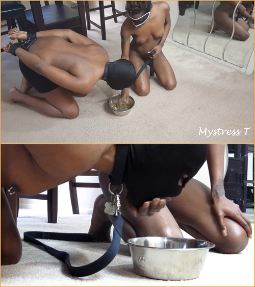 DOGGY BOWL SCAT SLAVE in HD1080p